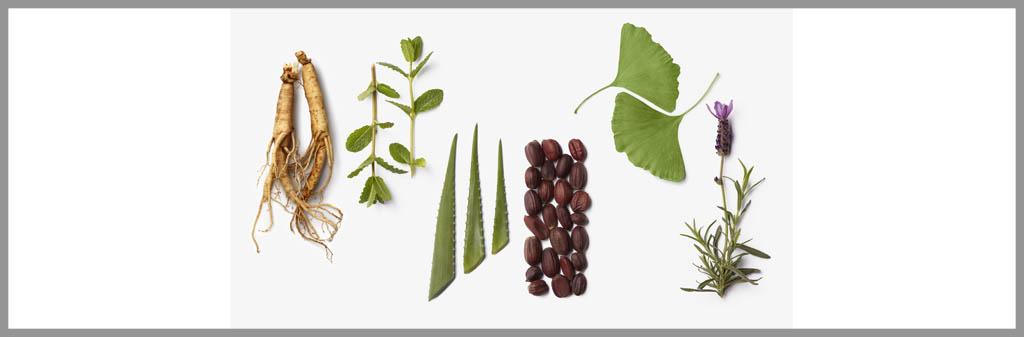 La-Biosthetique-Botanique-1-centum